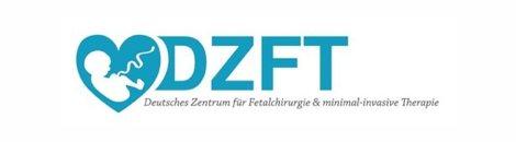 dzft-partner